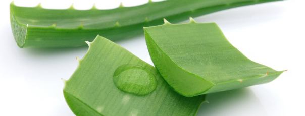Aloe Vera available from Washingborough Reflexology and Pain Clinic